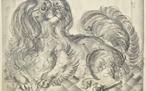 Picture dog, engraving, Tsuguharu, Fujita, lithograph, Little pikines