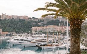 Picture Palma, building, home, yachts, Monte Carlo, Monte Carlo