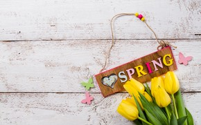 Picture butterfly, flowers, spring, yellow, tulips, yellow, wood, flowers, tulips, spring, decoration