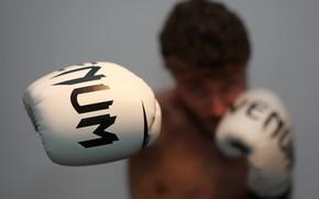 Wallpaper Boxing, blow, sport