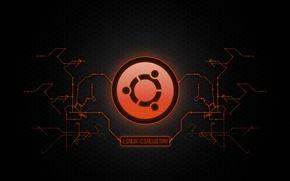 Wallpaper logo, logo, Metal, style, Ubuntu, UbuntuCircuitry, Ubuntu, scheme, Linux, chip, Linux