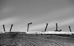 Picture minimalism, log, nails