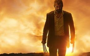 Picture cinema, film, Logan, blood, X-Men, Hugh Jackman, Wolverine, fury, movie, angry, Marvel, man