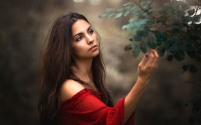 Picture girl, branches, background, mood, hair, hand