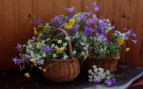 Picture summer, still life, bells, buttercups, flora, wildflowers, the Aegopodium grass