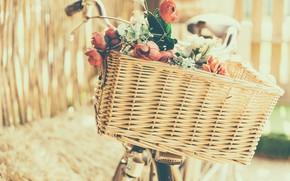 Picture flowers, bike, basket