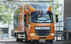 Picture orange, wall, the building, van, design, DAF, DAF, 2016, platform, 4x2, Euro6, DAF LF 320 …