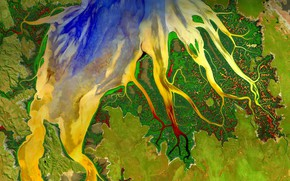 Wallpaper paint, mouth, satellite view, Western Australia, Cambridge Gulf, river