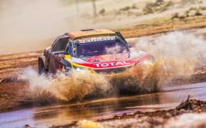 Picture Water, Auto, Sport, Machine, Speed, Race, Dirt, Peugeot, Squirt, Lights, Red Bull, 300, Rally, Dakar, …
