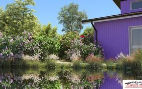 Picture summer, vegetation, structure, pond, property