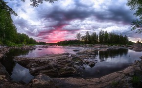 Picture forest, summer, river, Finland