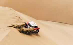 Picture Sand, Red, Mini, Sport, Desert, Speed, Rally, Dakar, Dakar, Rally, Dune, Buggy, Buggy, X-Raid Team, …