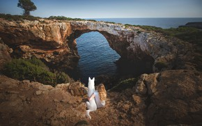 Picture sea, bridge, nature, dog, girl, arch, Spain, friends, The Mediterranean sea, Mallorca, The white Swiss ...