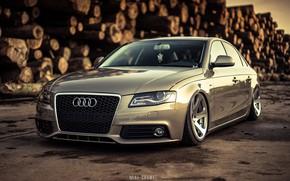 Picture Audi, Auto, Audi, Forest, Machine, Grille, Sedan, Lights, Car, Sedan, The front, Audi A4, Logs, …