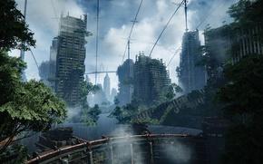 Picture Nature, The city, War, Apocalypse, Postapokalipsis, Crysis 3, Destruction