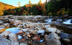 Picture Stream, Autumn, River, Forest, Stones, Nature, Fall, Autumn, Colors, Forest, Flow