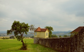 Picture wall, landscape, tree