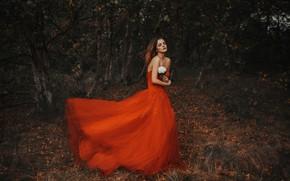 Wallpaper white rose, flower, red dress, The Autumn Bringer, girl, mood, Jodi Lakin, autumn, forest