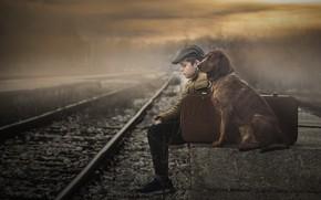 Picture dog, boy, railroad, friends