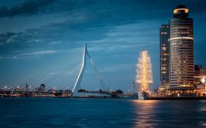 Picture Holland, Rotterdam, Rotterdam, Ideology