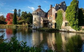 Picture trees, pond, reflection, castle, England, England, Scotney Castle