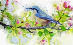Picture flowers, rendering, bird, branch
