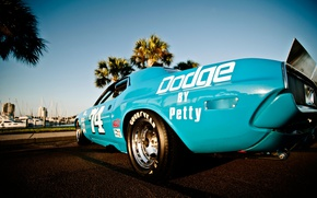 Picture Dodge Challenger, muscle car, race car, 1973