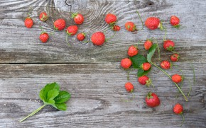 Picture berries, Board, strawberry