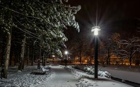 Wallpaper Samobor, lights, alley, night, lights, trees, bench, winter, Croatia, snow, Park