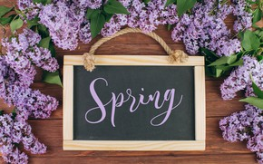 Picture flowers, branches, spring, frame, Board, flowering, wood, blossom, flowers, lilac, spring, violet, lilac, frame