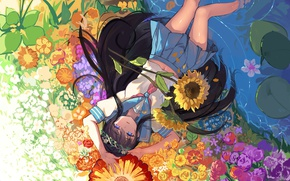 Picture water, girl, sunflowers, flowers, anime, art, form, schoolgirl, haraguroi you