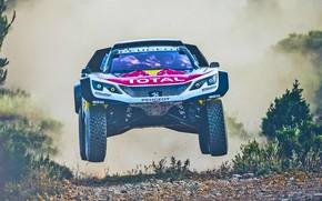 Picture Sport, Speed, Race, Dirt, Peugeot, Lights, Red Bull, Rally, Rally, Sport, Flies, DKR, 3008, Silk ...