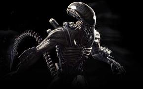 Picture alien, xenomorph, Mortal Kombat X