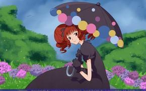 Picture girl, umbrella, anime, art, xxxHolic