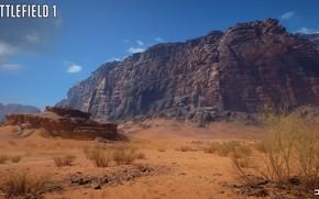 Picture rocks, desert, Bush, Battlefield 1, Sinai Desert