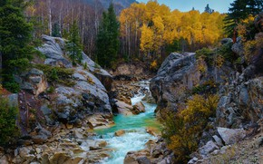 Wallpaper Independence Pass, river, rocks, Independence Pass, autumn, trees, Rocky Mountains, Colorado, Colorado, Rocky mountains, stones
