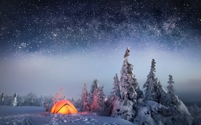 Wallpaper forest, stars, the sky, winter, snow, night, tent