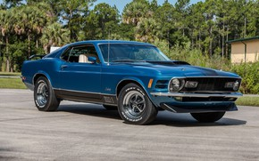 Picture Mustang, Ford, Muscle, Blue, 1970, Fastback, Mach 1