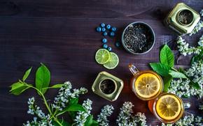 Picture berries, lemon, tea, blueberries, drink