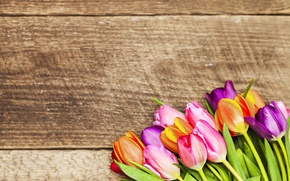 Picture flowers, bouquet, colorful, tulips, love, wood, romantic, tulips, gift