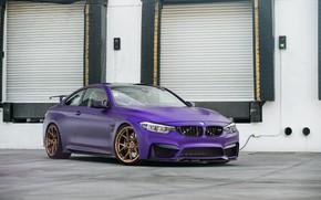 Picture BMW, Purple, F82