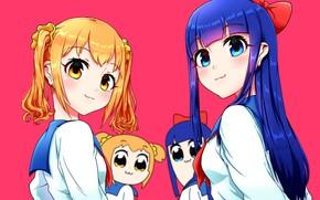 Picture girls, anime, art, Pop Team Epic