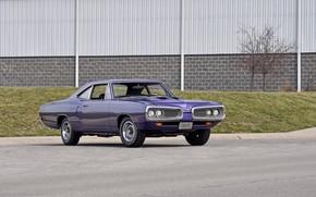Picture Dodge, Purple, 1970, Coronet, Old, Super Bee