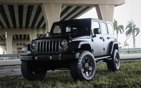 Picture Black, Matte, Wrangler, Jeep