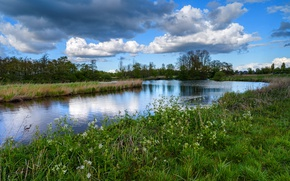Picture greens, the sky, grass, clouds, trees, river, the reeds, houses, Netherlands, the bushes, Twiske