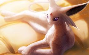 Picture game, anime, Pokemon, manga, japanese