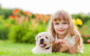 Picture face, smile, girl, puppy, friends, puppy, face, Retriever, dogs, glance, little girls