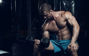 Wallpaper biceps, dumbbells, dumbbells, bodybuilder, gym, gym, training, gym, training, bodybuilder, biceps, muscle, abs, muscle