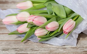 Picture flowers, bouquet, tulips, pink, wood