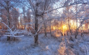 Picture winter, landscape, sunset, nature, landscapes, weather, Orsk, Orenburzhye